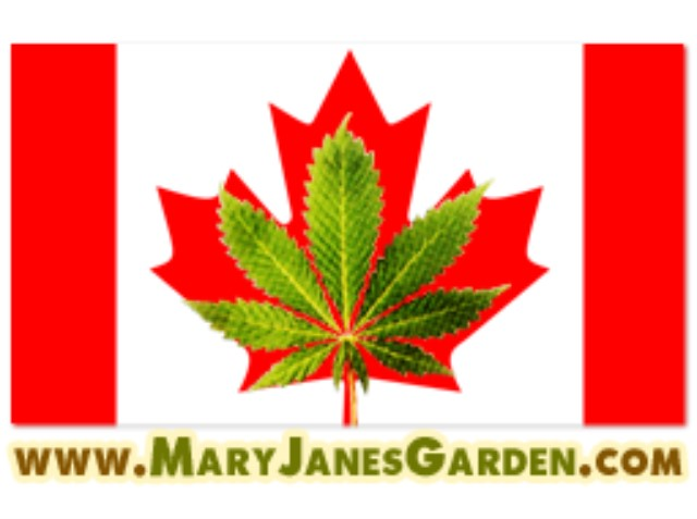 cannabis-shop Canada Richelieu